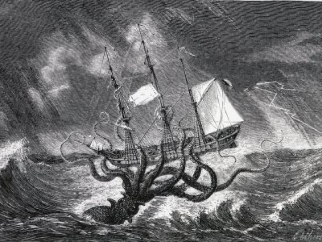Loài mực khổng lồ như hòn đảo nhỏ, có thể đánh chìm thuyền bè là có thực?