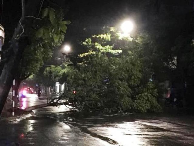Bão số 5: Bình Định đang có mưa và gió lớn, di dời gần 4.000 người