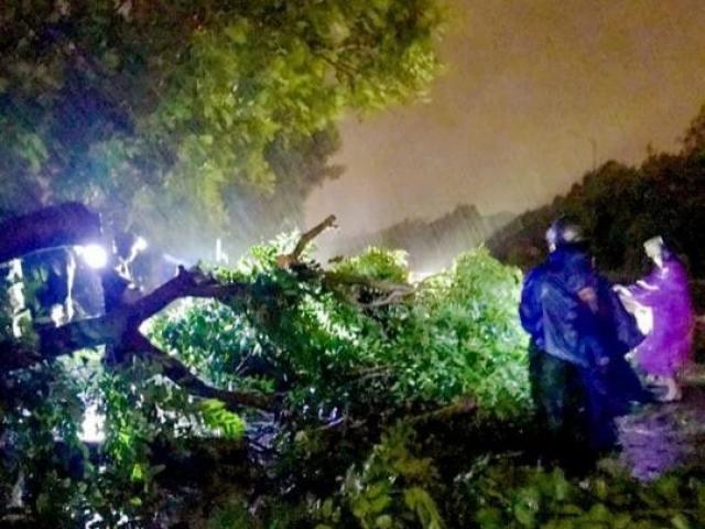 Bão số 5 Matmo đã đổ bộ đất liền, mưa to gió giật liên hồi, nhiều nơi cắt điện