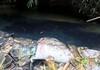 Triệu tập hai người liên quan vụ đổ dầu gây ô nhiễm nước sông Đà