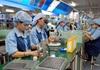 Xuất khẩu doanh nghiệp nội đang có đà lấn át doanh nghiệp ngoại