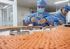 Quốc gia nào là 'công xưởng' sản xuất vaccine Covid-19 của thế giới?