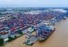 Cảng Cát Lái chiếm hơn 67% thị phần hàng container khu vực TP.HCM