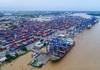 """Cục Hàng hải """"mạnh tay"""" ngăn chặn tình trạng nâng giá cước vận tải biển"""