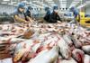 Vĩnh Hoàn (VHC): Doanh thu tháng 8 đi lùi, XK tụt dốc ở thị trường châu Âu