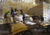 Trung An (TAR) trúng gói thầu 250 tỷ cung cấp gạo hỗ trợ