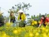 Công tác tuyên truyền là yếu tố quan trọng để Quỹ Hỗ trợ Nông dân đi đến thắng lợi