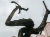 7 cây sưa đỏ trên đường Nguyễn Văn Huyên đã chết sau thời gian dài truyền dịch