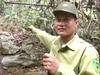 """Bảo vệ rừng Khe Bu: Bất chấp """"lâm tặc"""" trả đũa"""