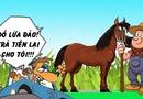 Truyện cười Cá tháng 4: Trả giá vì phớt lờ lời cảnh báo của bác nông dân