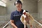 9x xứ Quảng thu trăm triệu từ gà Đông Tảo