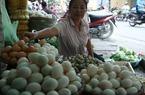 Nông dân lao đao vì trứng giá rẻ bèo vẫn cho nhập hơn 600.000 quả
