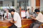 Agribank tạo động lực phát triển nông nghiệp sạch ở Quảng Trị