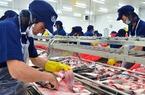 Xuất khẩu cá tra sang Mỹ giảm gần 60% do vướng quy định mới