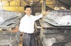 Những ý nguyện của nông dân Việt Nam