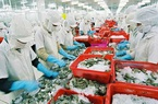 """Thực thi EVFTA, mặt hàng nông sản Việt nào sẽ """"thắng lớn"""" tại EU?"""