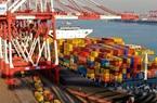Xuất khẩu giảm nhưng nhập khẩu của Trung Quốc bất ngờ phục hồi
