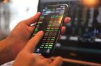 Trước FTM, SMD Holdings góp mặt tại những mã nào?