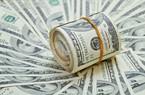 Giá USD trên thế giới tăng cao nhưng trong nước ít biến động