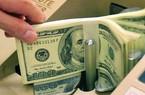 Kiều hối về TP.HCM 9 tháng đạt 3,8 tỷ USD