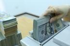 """Tỷ giá ngoại tệ hôm nay 12/11: Sụt giảm """"chợ đen"""", """"đóng băng"""" trong ngân hàng"""