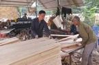 Kim ngạch xuất khẩu tăng phi mã, gỗ dán Việt liên tục bị điều tra xuất xứ