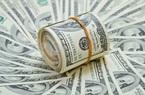 Tỷ giá ngoại tệ hôm nay 19/11: Duy nhất Techcombank giảm giá
