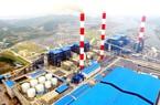 Đấu giá 51,4 triệu cổ phiếu Nhiệt điện Quảng Ninh, SCIC dự thu hơn 1.200 tỷ đồng