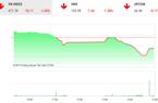 Chứng khoán ngày 22/11: Nhà đầu tư hoang mang, VnIndex rơi thẳng đứng vì cổ phiếu trụ
