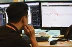 Thị trường chứng khoán 28/11: Dòng tiền vào thị trường rất yếu