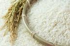 Giá gạo cao nhất trong 2 tháng qua