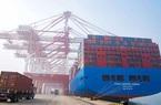 Bị WTO xử thua kiện Mỹ, Trung Quốc vẫn quyết áp hạn ngạch nhập khẩu ngũ cốc năm 2020