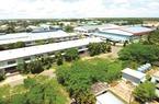TP.HCM: Kiểm toán nhà nước phát hiện nhiều vấn đề với khu công nghiệp