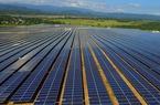 Công ty Trung Quốc hưởng lợi từ cuộc đua điện mặt trời tại Việt Nam