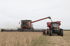 Mỹ công bố đơn hàng đậu tương hơn 500 nghìn tấn từ Trung Quốc: chiến tranh thương mại hạ nhiệt?