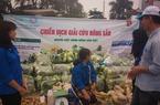 """Nông dân """"lười"""" đăng ký mã số truy xuất nguồn gốc nông sản, doanh nghiệp gặp khó"""