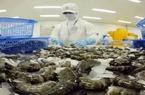 Xuất khẩu tôm sang Trung Quốc gặp khó do đồng nhân dân tệ liên tục mất giá