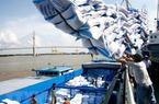 Thêm 42 doanh nghiệp được cấp phép xuất khẩu gạo theo Nghị định 107