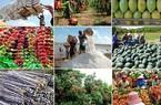 """Giá nông sản giảm sâu, xuất khẩu lập tức """"lao dốc"""""""