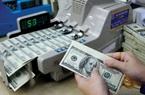 Tỷ giá ngoại tệ hôm nay 14/1: Chỉ Vietcombank, Techcombank nhúc nhích