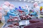 Xuất khẩu cá ngừ vào EU kỳ vọng đạt 123 triệu USD