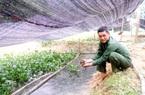 Thái Nguyên: Một ông nông dân trúng lớn khi liều đào ao thả nuôi loài ốc đặc sản bò lừ đừ chỉ ăn bèo, cỏ
