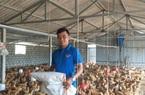 Những doanh nhân 9X đưa nông nghiệp Hà Tĩnh 'cất cánh'