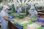 Xuất khẩu thủy sản sang EU năm 2020 dự báo đạt hơn 1 tỷ USD