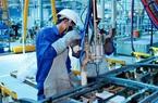 Người lao động tố cáo được bảo vệ việc làm từ ngày 01/12/2020