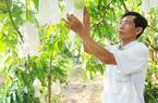 Đồng Tháp: Triển khai mô hình thi đua 'Người nông dân chuyên nghiệp'
