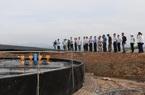 """Quảng Ninh: """"Đi sau về trước"""" trong nuôi tôm thâm canh bằng công nghệ Biofloc"""