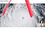 """Người tung tin giả về """"siêu bão"""" cấp 17 hướng vào miền Trung có bị xử phạt?"""