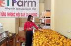 Hòa Bình: Nhiều sản phẩm nông nghiệp khẳng định vị thế trên thị trường