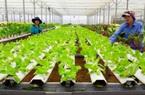 Chiến lược dài hơi cho nông nghiệp sạch